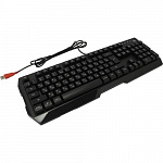 Keyboard A4Tech Bloody Q135 Neon черный USB Multimedia for gamer LED 1156190